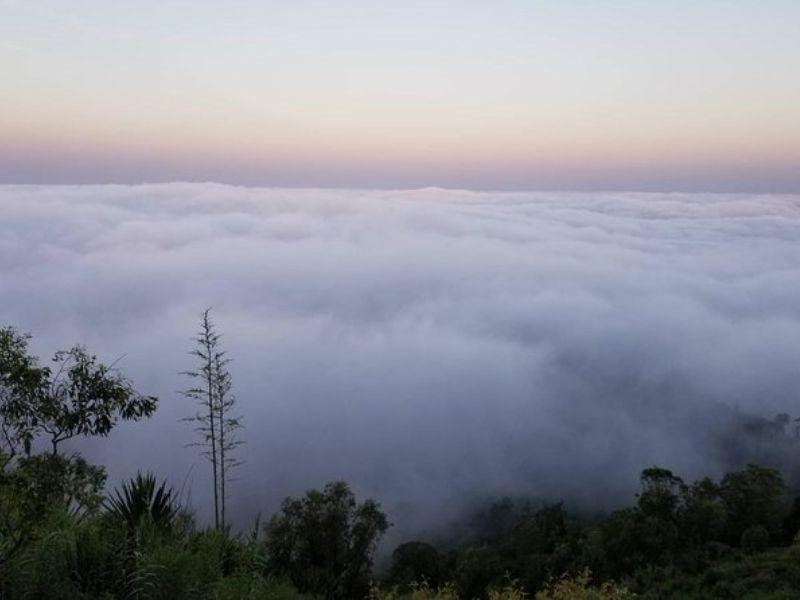 Trekking dans le parc naturel de la Serra Malagueta