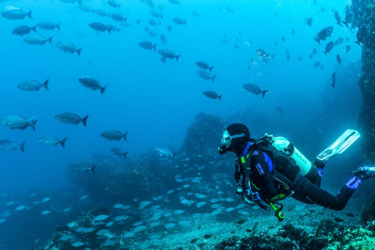 Plongée sous-marine d'une demi-journée à Sal