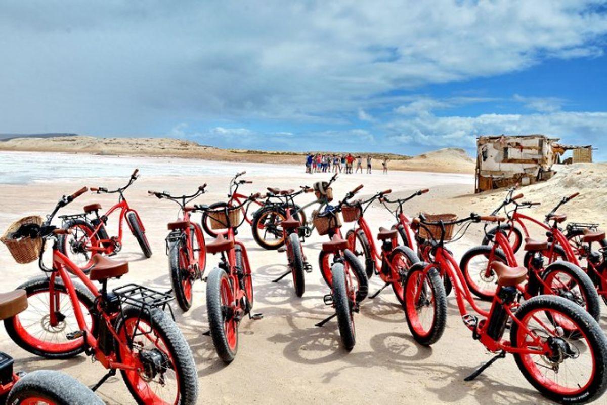 Visite guidée tout terrain en vélo de plage électrique